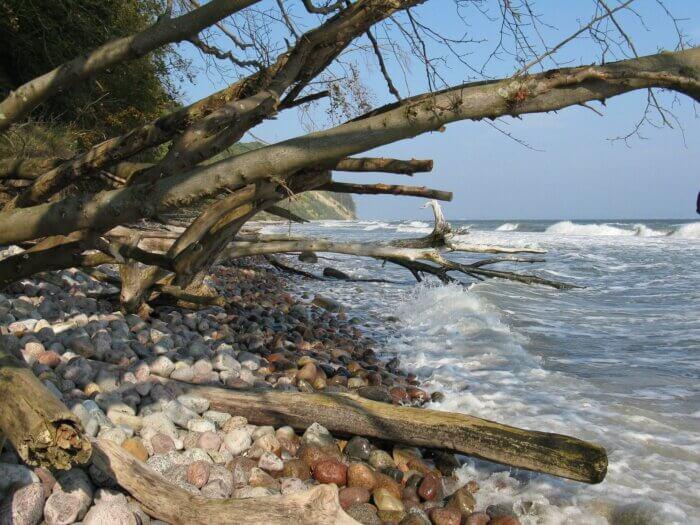 praia da ilha da madeira portugal